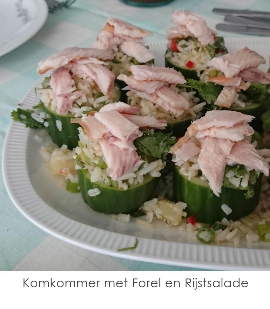 komkommer-met-forel-en-rijstsalade